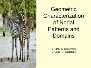Geometric Characterization of Nodal Patterns and Domains