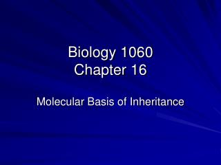 Biology 1060 Chapter 16