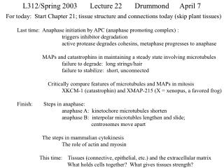 L312/Spring 2003	Lecture 22	Drummond 	April 7