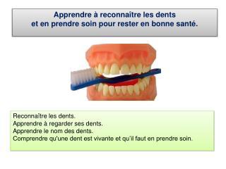 Apprendre à reconnaître les dents et en prendre soin pour rester en bonne santé.