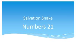 Salvation Snake
