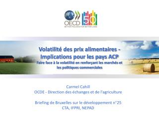 Volatilité des prix alimentaires - Implications pour les pays ACP
