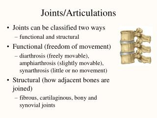 Joints/Articulations