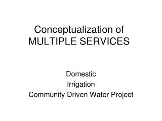 Conceptualization of  MULTIPLE SERVICES