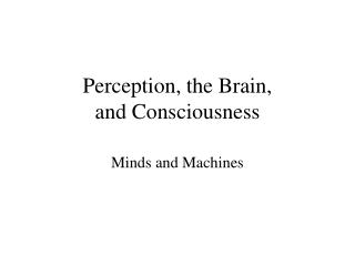 Perception, the Brain,  and Consciousness
