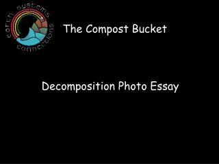 Decomposition Photo Essay