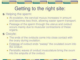 Getting to the right site: