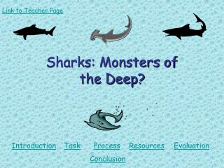 Sharks: Monsters of  the Deep?