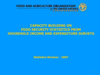 CAPACITY BUILDING ON  FOOD SECURITY STATISTICS FROM   HOUSEHOLD INCOME AND EXPENDITURE SURVEYS