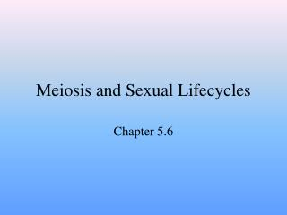 Meiosis and Sexual Lifecycles