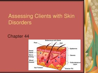 Assessing Clients with Skin Disorders