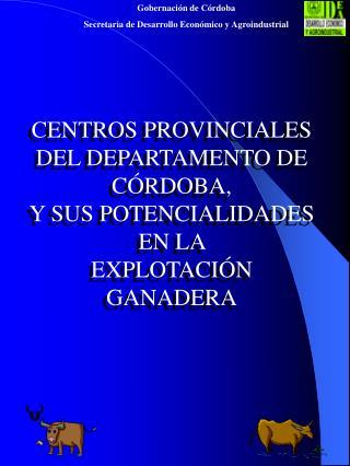 CENTROS PROVINCIALES  DEL DEPARTAMENTO DE C�RDOBA,  Y SUS POTENCIALIDADES  EN LA  EXPLOTACI�N