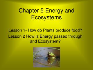 Chapter 5 Energy and Ecosystems