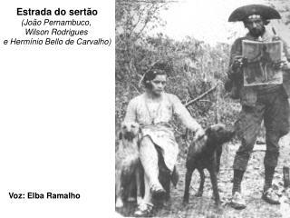 Estrada do sertão (João Pernambuco,  Wilson Rodrigues  e Hermínio Bello de Carvalho)