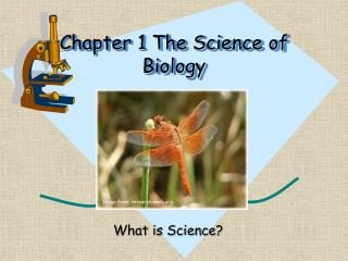 Chapter 1 The Science of Biology