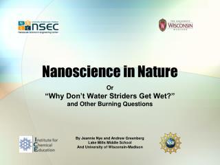 Nanoscience in Nature