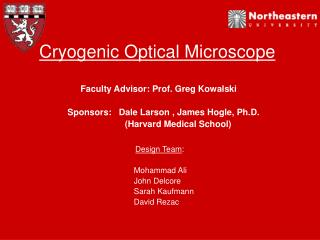 Cryogenic Optical Microscope