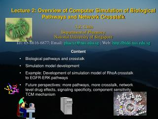 Content Biological pathways and crosstalk Simulation model development