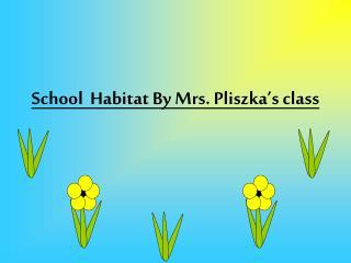 School  Habitat By Mrs. Pliszka's class