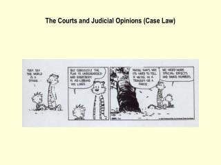 The Courts and Judicial Opinions (Case Law)