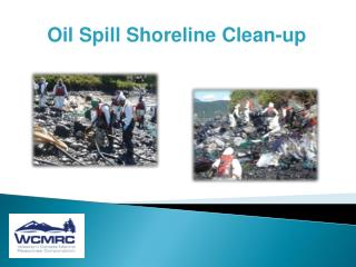 Oil Spill Shoreline Clean-up