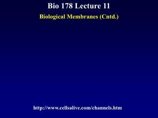 Bio 178 Lecture 11