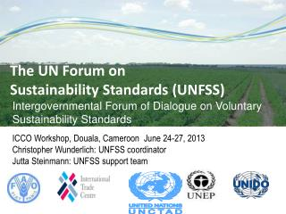 Intergovernmental Forum of Dialogue on Voluntary Sustainability Standards