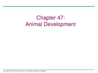 Chapter 47: Animal Development