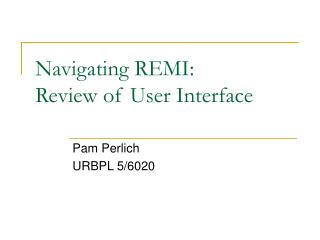 Navigating REMI: Review of User Interface