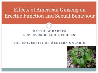 Effects of American Ginseng on Erectile Function and Sexual Behaviour