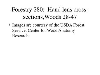 Forestry 280:  Hand lens cross-sections,Woods 28-47