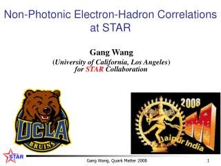 Non-Photonic Electron-Hadron Correlations  at STAR