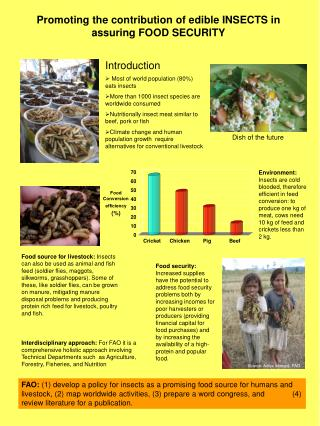 Promoting the contribution of edible INSECTS in assuring FOOD SECURITY