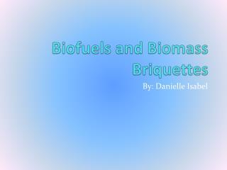 Biofuels and  B iomass  B riquettes