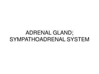 ADRENAL GLAND; SYMPATHOADRENAL SYSTEM