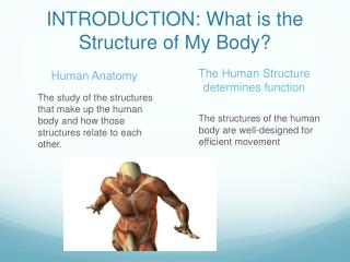 INTRODUCTION: What is the Structure of My Body?