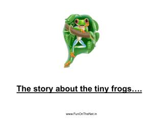 The story about the tiny frogs�.