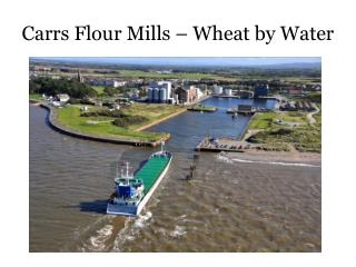 Carrs Flour Mills – Wheat by Water