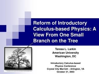 Reform of Introductory Calculus-based Physics: A View From One Small Branch on the Tree