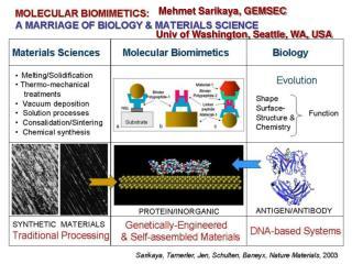 Mehmet Sarikaya, GEMSEC  Univ of Washington, Seattle, WA, USA