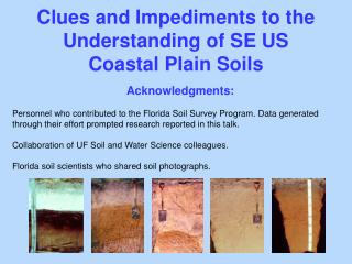 Clues and Impediments to the Understanding of SE US Coastal Plain Soils