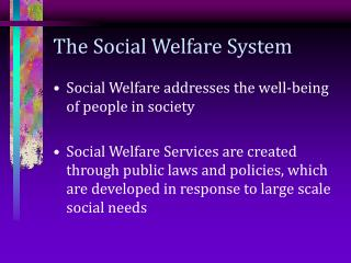 The Social Welfare System