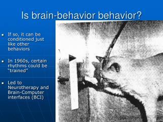 Is brain-behavior behavior