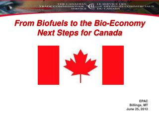 From Biofuels to the Bio-Economy Next Steps for Canada