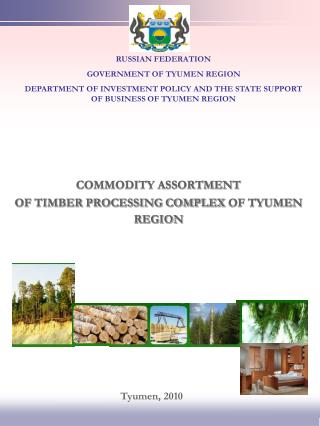 COMMODITY ASSORTMENT  OF TIMBER PROCESSING COMPLEX OF TYUMEN REGION