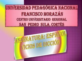 ASIGNATURA: ESPA�OL vicios de dicci�n