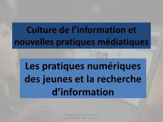 Culture de l'information et nouvelles pratiques médiatiques
