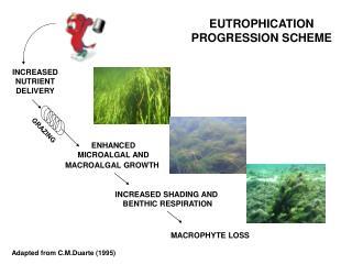 EUTROPHICATION PROGRESSION SCHEME