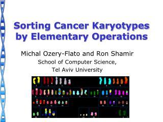 Sorting Cancer Karyotypes by Elementary Operations