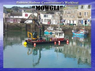 "Padstow Harbour Commissioner's Workboat ""MOWGLI"""